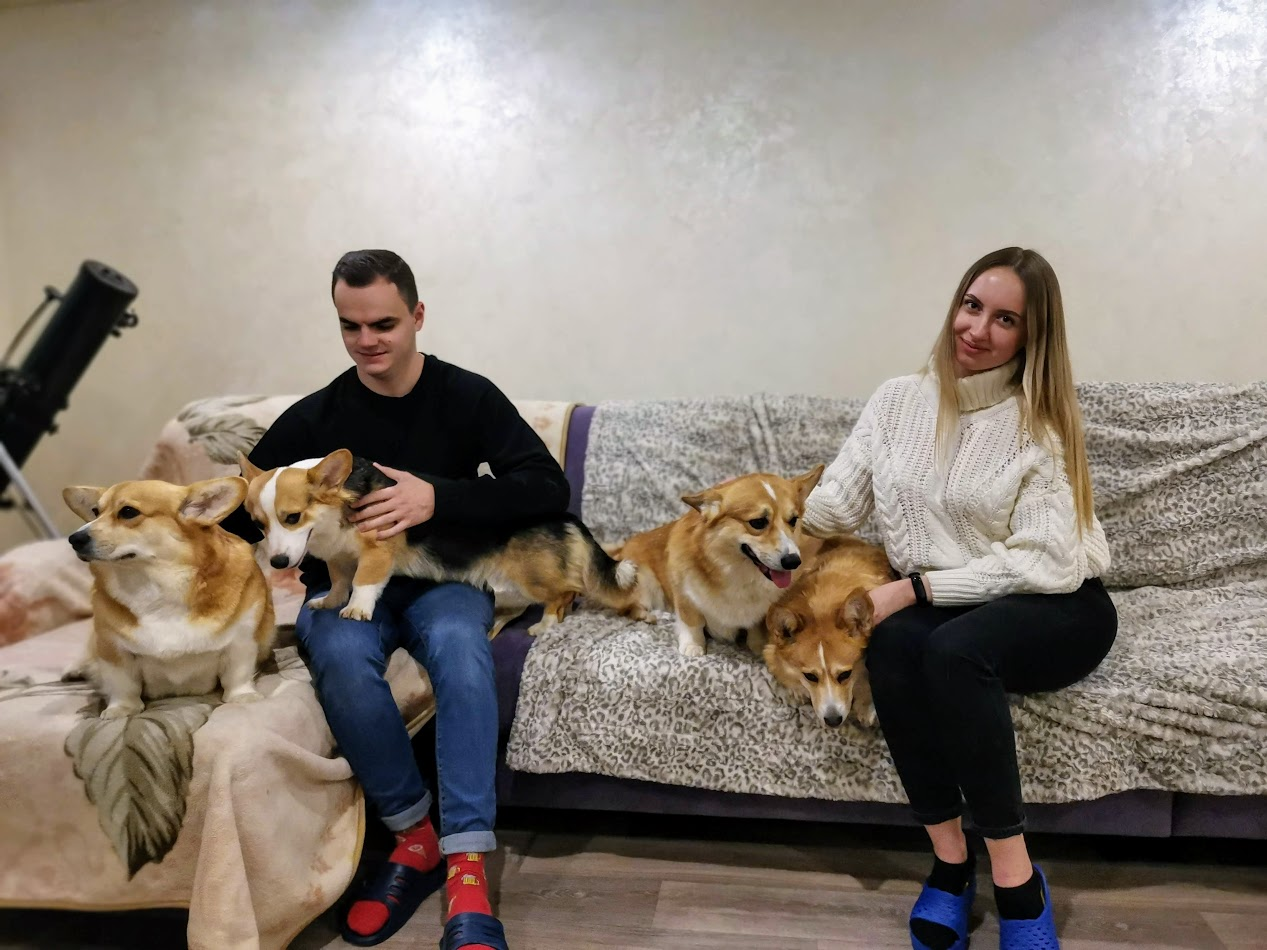 Spend time with corgi dogs)