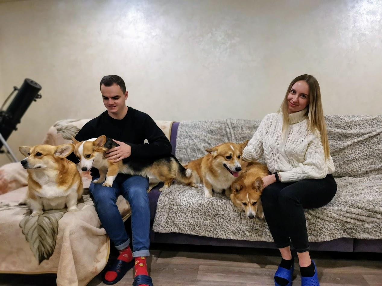Проводим время с собаками корги)